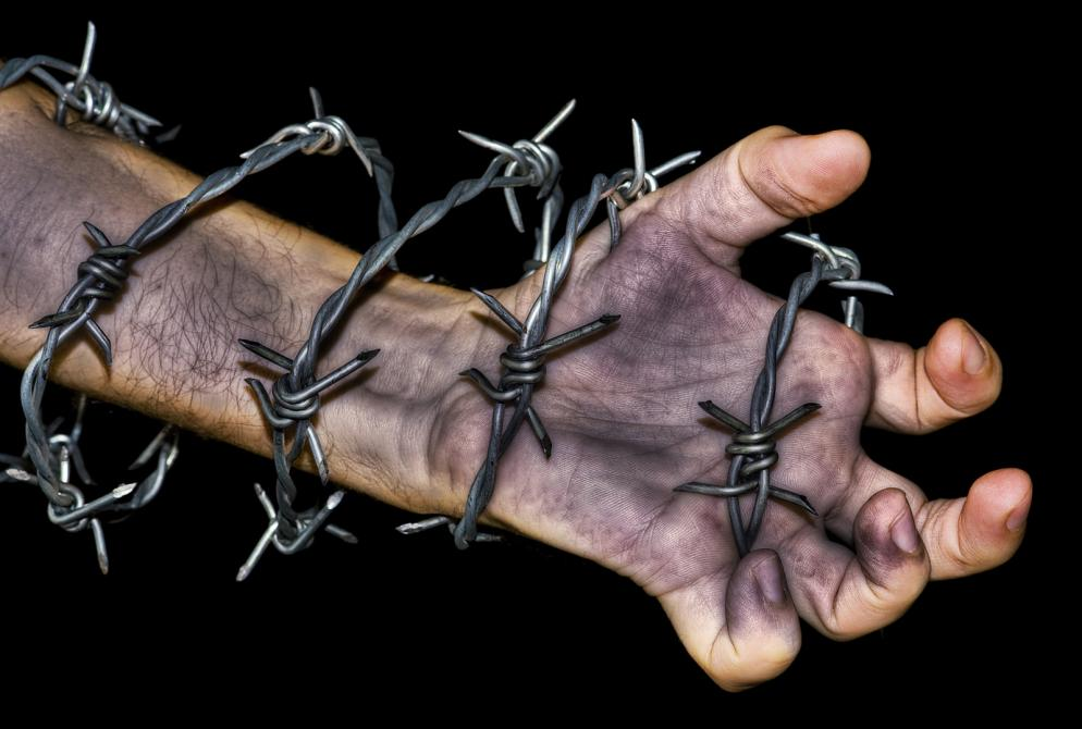 Hand Grabbing A Barbed Wire